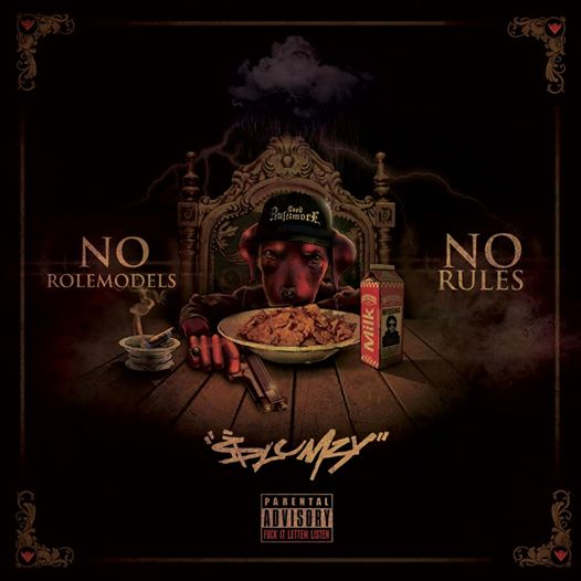 NoRoleModels No Rules Cover
